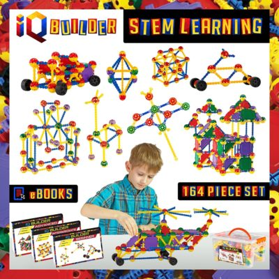 This is an image of an IQ Builder Learning Toy for kids.