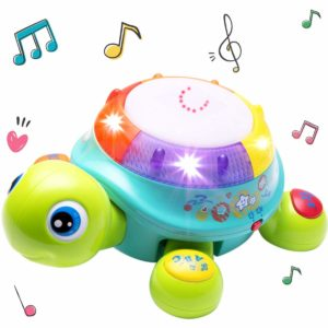 Musical Turtle Toy