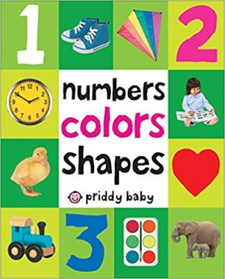 This is an image of a First 100 color pictures board book for toddlers.