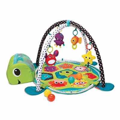 This is an image of a 3 in 1 turtle ball pit for kids.