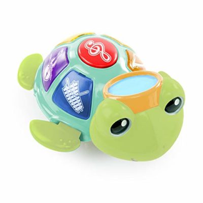 This is an image of a turtle musical toy for toddlers.