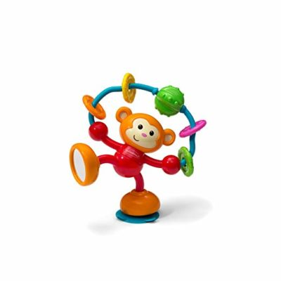 This is an image of a stick and spin suction toy for babies.