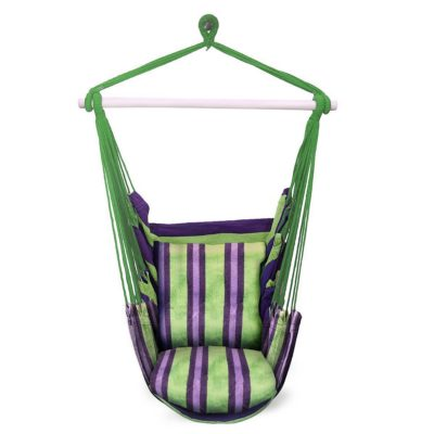 This is an image of a green and purple hammock chair.