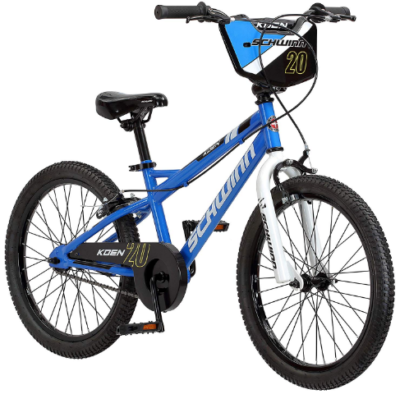 This is an image of boy's bike 20 inch wheels in blue color