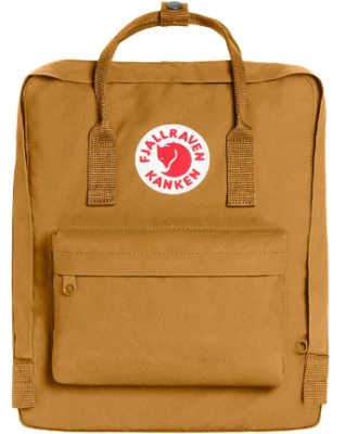 This is an image of girl's classic backpack in brown color