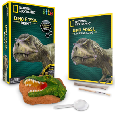This is an image of kid's dino fossil dig kit by national geographic