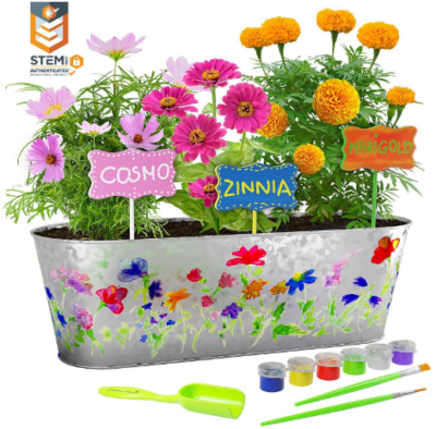 This is an image of girl's flower growing kit with painting in colorful colors