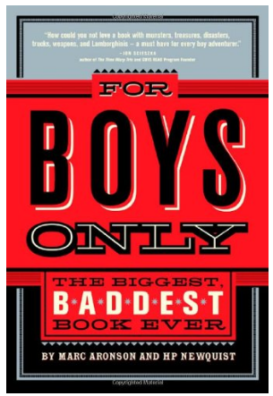 This is an image of for only boys book