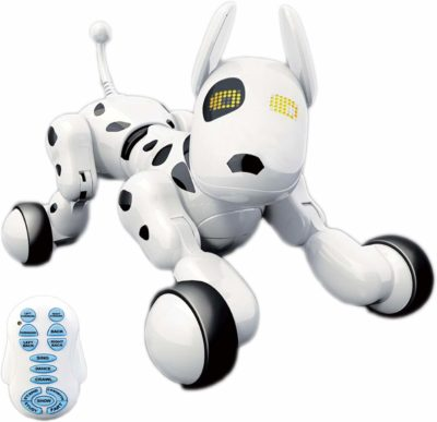 This is an image of a white interaction dog puppy for kids.