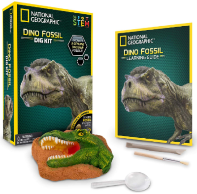This is an image of boy's National geographic dino fossil dig kit