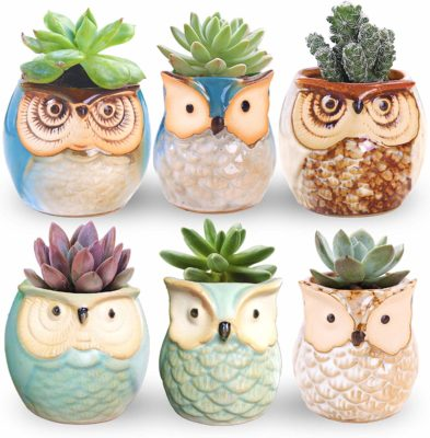 This is an image of a 6 piece ceramic owl pots by ROSE CREATE.