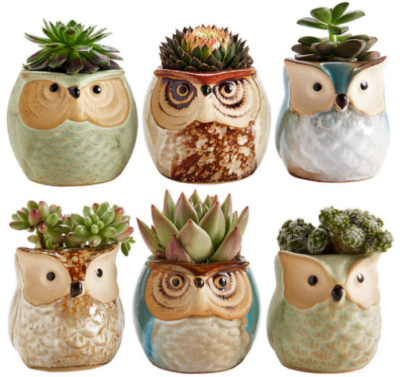 This is an image of mom's plant pot set with owl design in colorful colors
