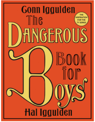 This is an image of boy's book the dangerous